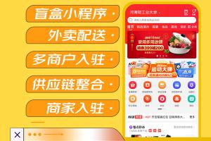 微信小程序商城源码拼团购物拍卖众筹盲盒软件系统